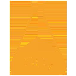 Anidride solforosa e solfiti